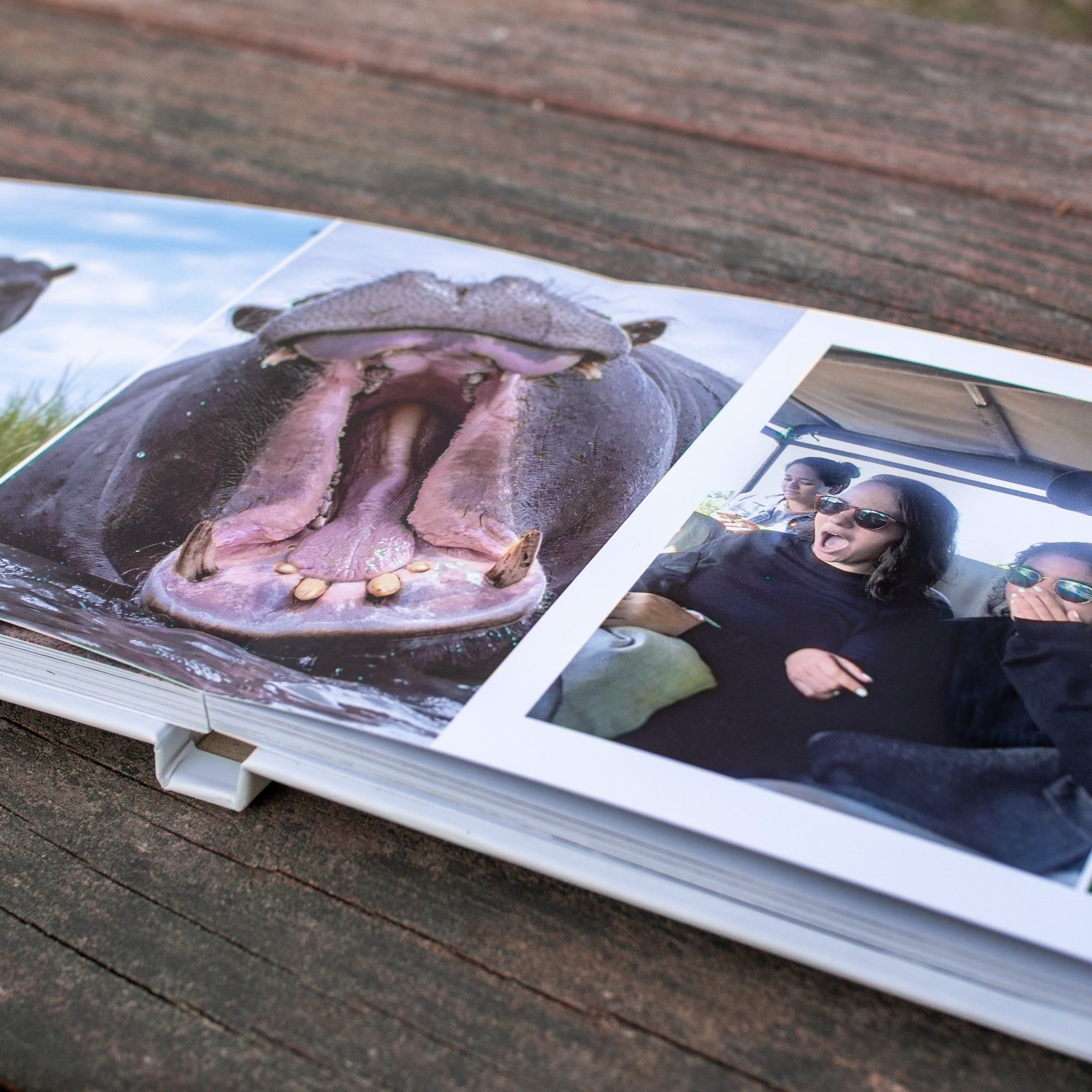 An open Luminta Photobook showing a hippo with its mouth open and another page with 2 people reacting