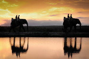 4 people riding 2 elephants over a lake during sunset