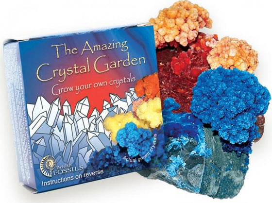 The Amazing Crystal Garden - Mineral Kit