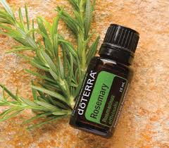 doTerra - Essential Oils - Rosemary