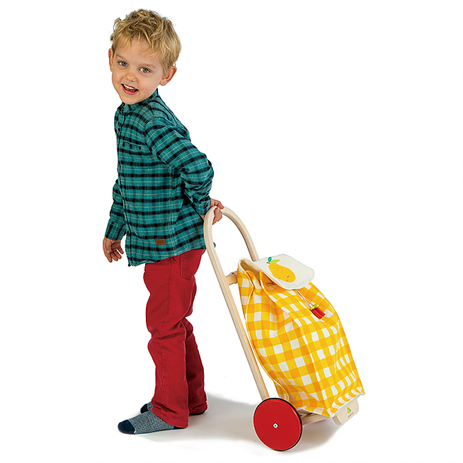 Tender Leaf Toys Pull Along Shopping Trolley