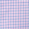 Graph Check Pink and Blue Poplin Shirt Swatch