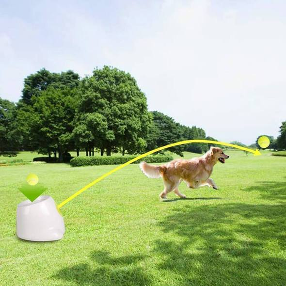 Doggopult™ Automatic Dog Ball Catapult
