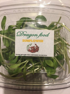 Punnet of Sunflower Microgreens (30g)
