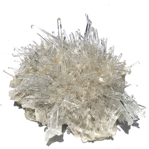 Quartz Crystal Needle Cluster