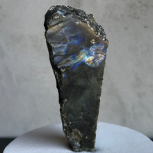 Load image into Gallery viewer, Tall Cut Labradorite Lid