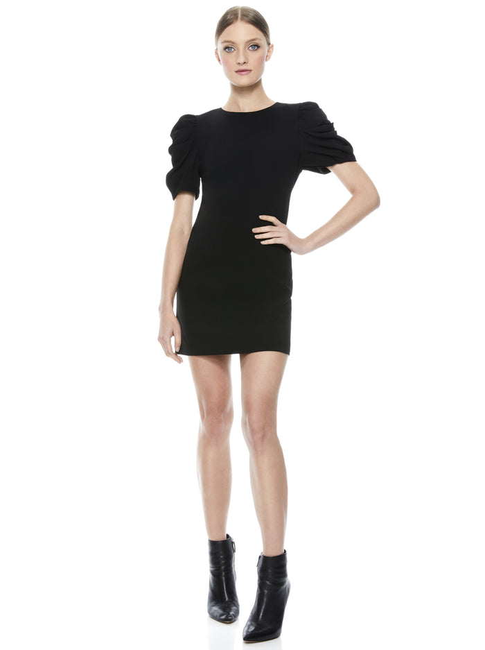 Alice and Olivia Hanita Puff Sleeve Shirt Dress