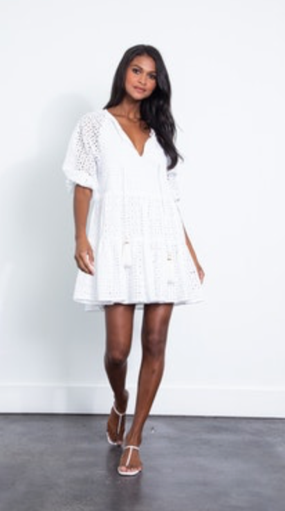 Karina Grimaldi Irina Eyelet Mini Dress