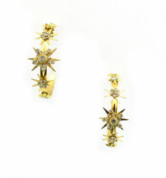 Elizabeth Cole Apollo Earrings