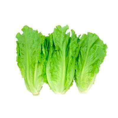 Hong Kong Farm Vegetables Organic Chinese Lettuce (300g)