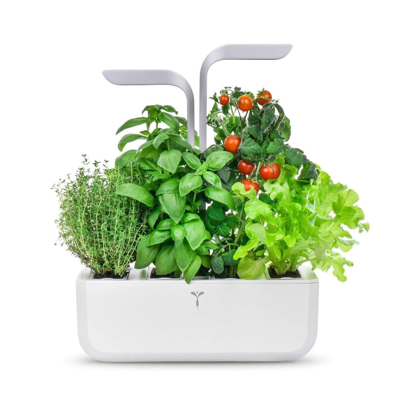 Véritable Herbs Véritable® Smart Artic White Indoor Garden
