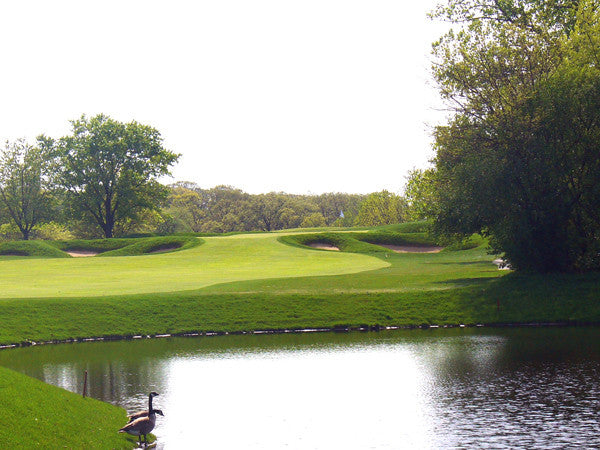 10 ways golf courses are becoming more environmentally friendly