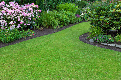 5 Helpful Spring Lawn And Garden Tips