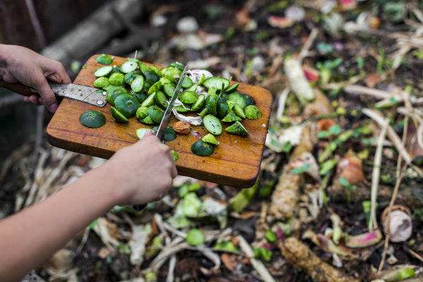 Composting: Frequently Asked Questions
