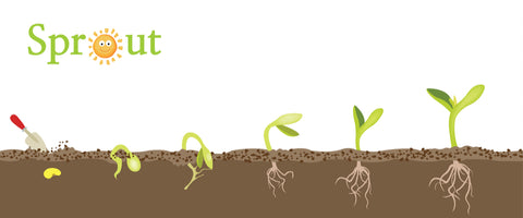 Earth Smart Solutions - Inspire Seed Starter