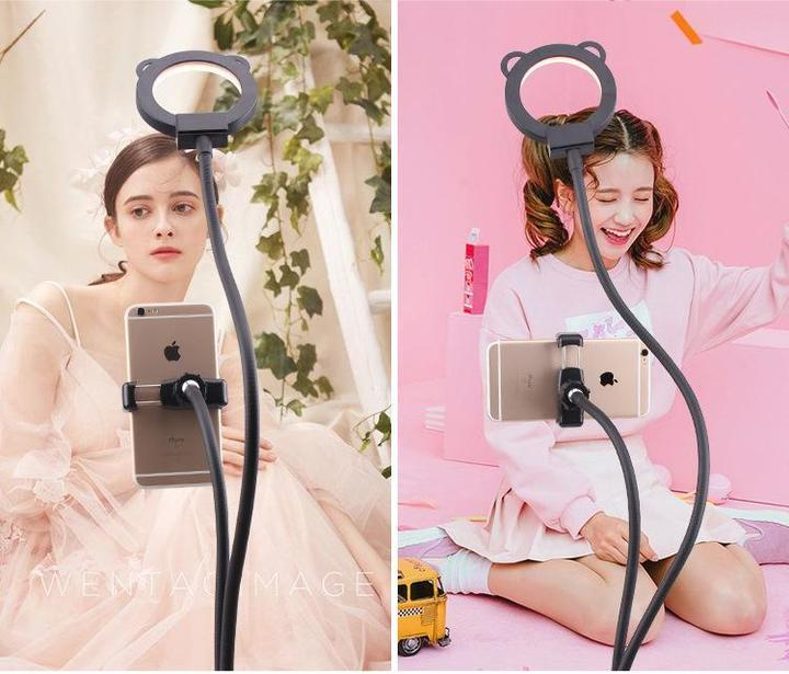 Professional Portable LED Light with Cell Phone Holder