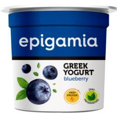 Epigamia Greek Yoghurt Blueberry Cup 90 GM