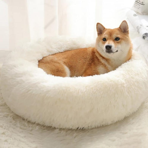 Pure White Comfy Calming™ Pet Bed