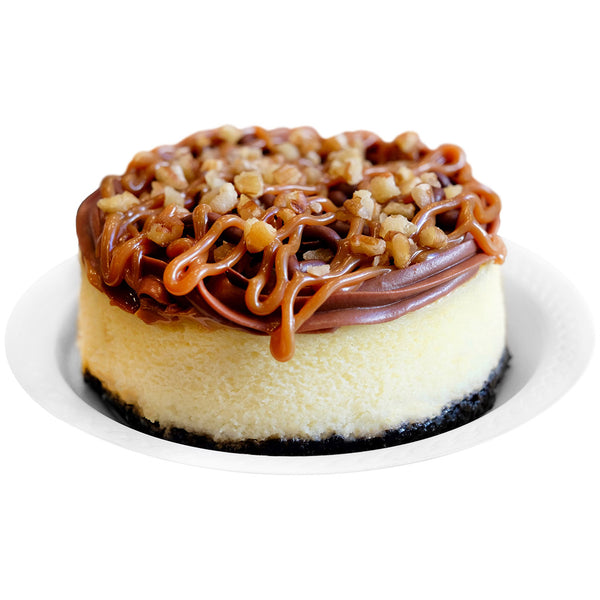 Mini Cheesecake Tortuga