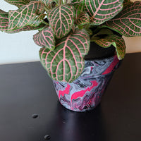 Pink, Black, and White Art Clay Pot