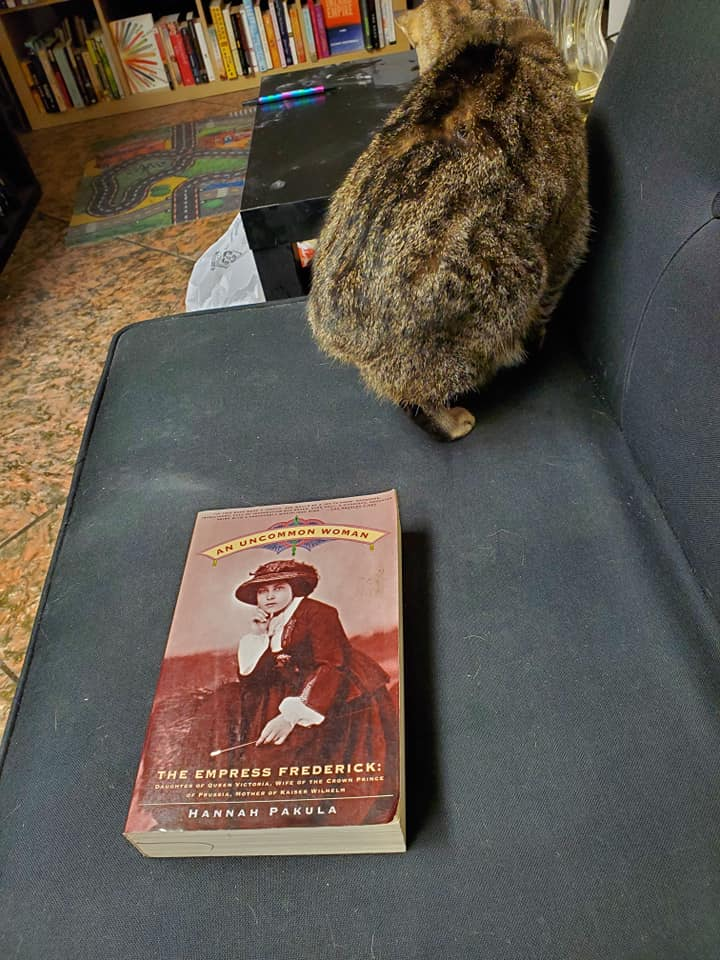 3 books our bookstore cat does not recommend