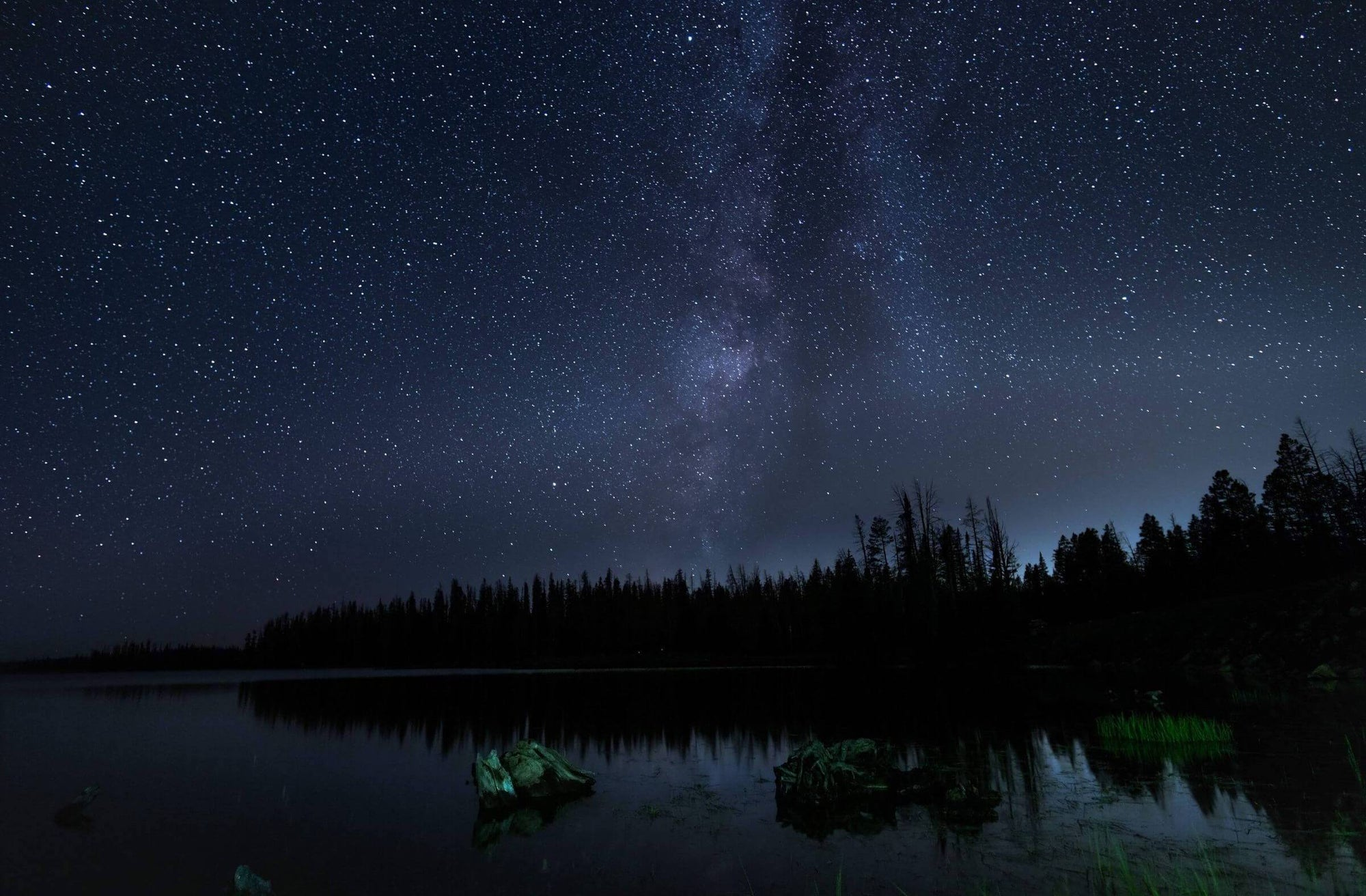 starry night sky over woods and lake