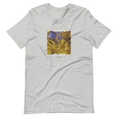 Grey t shirt with earth graphic