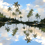 Hawaii Mirrored 01: Double Exposure Photography of Hawaii