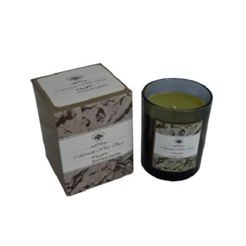 White Sage Scented Candle - Health Matters