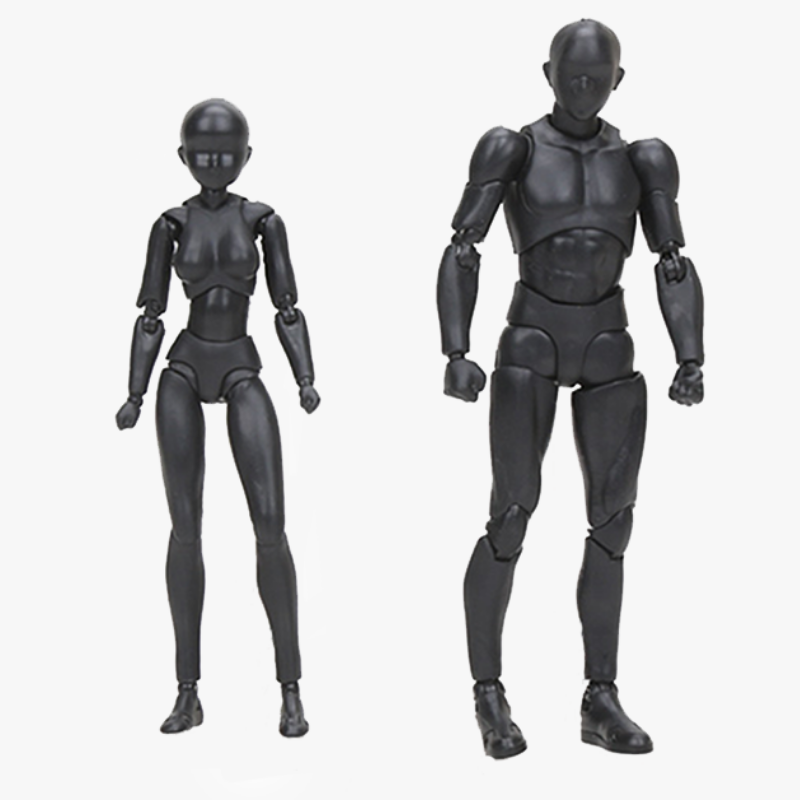 Official Body Kun and Body Chan Model Figures for Artists