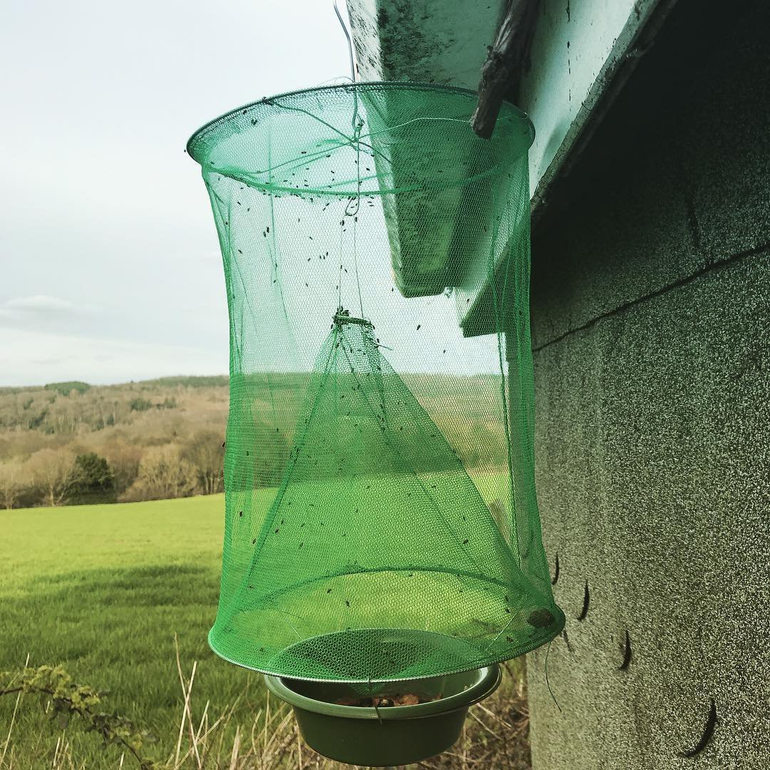 Portable Nontoxic Fly Mosquito Trap