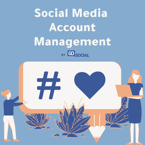Social Media Account Management (30 Days)