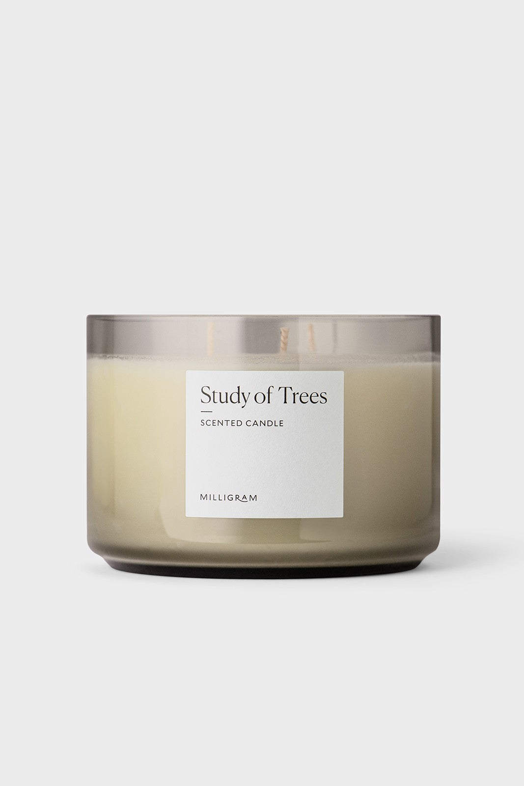 Scented Three Wick Candle | Study of Trees