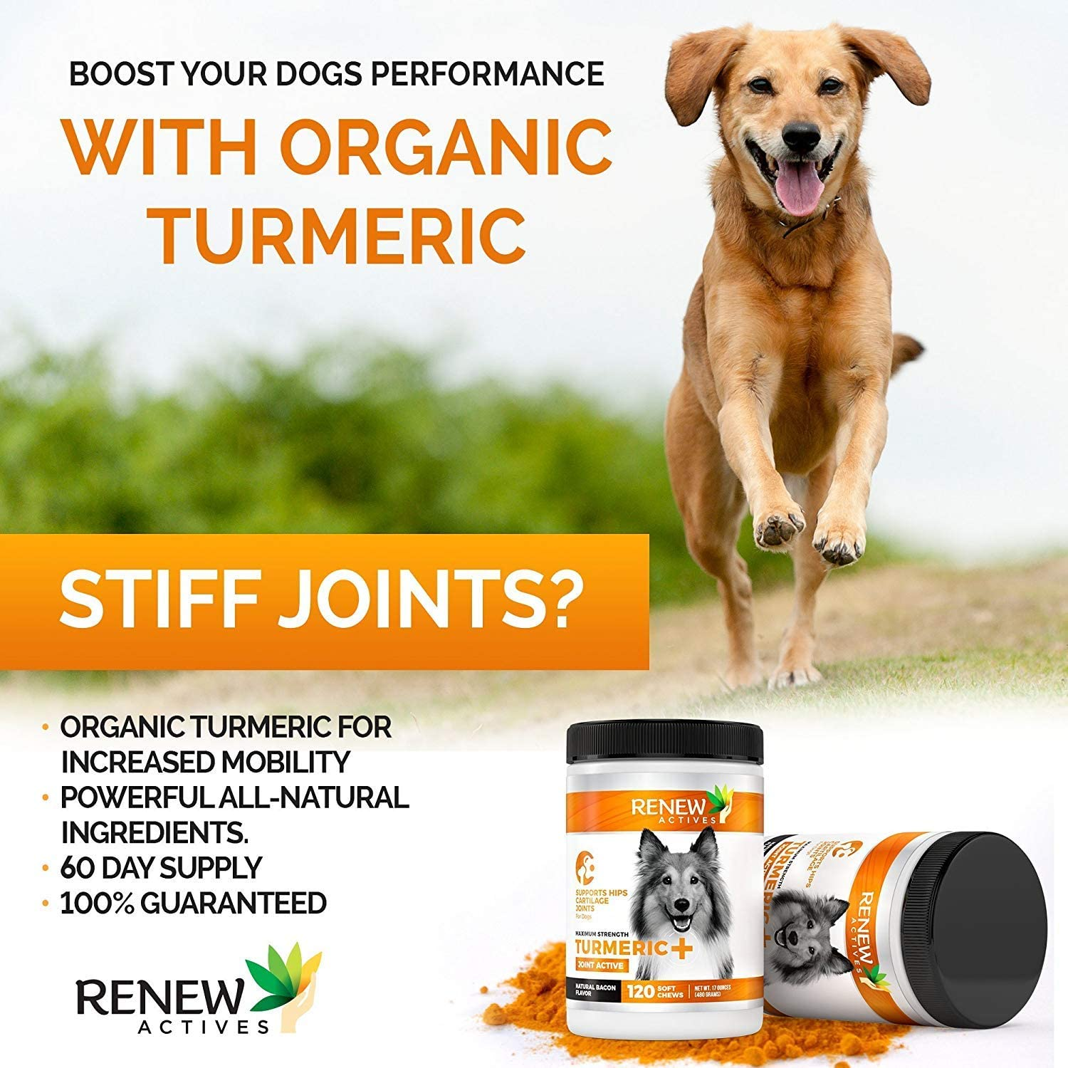 Renew Actives Dog Joint Pain Support Supplement, 120 Capsules