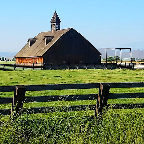 Baker County Barn