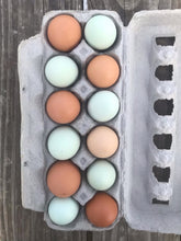 Load image into Gallery viewer, AMI Farm Chicken Eggs- Friday 4/16