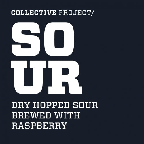 Raspberry Dry Hopped Sour