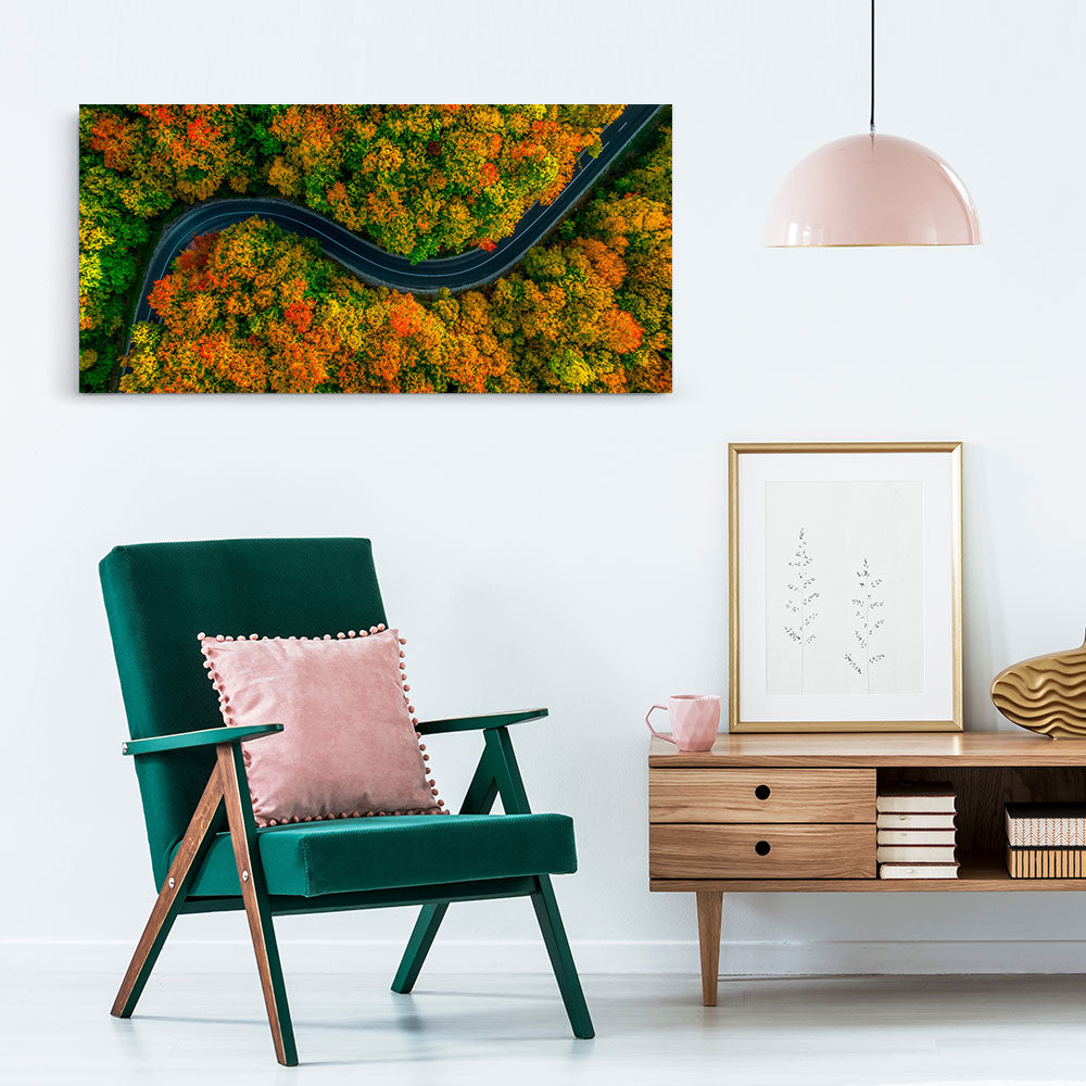 Aerial View Forest Canvas Wall Art