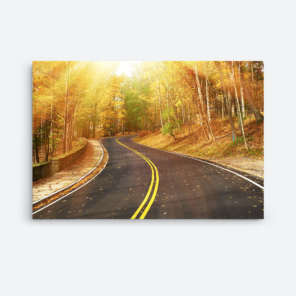 Autumn Forest Nature Canvas Wall Art