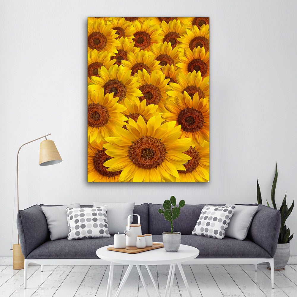 Sunflower Petals Canvas Wall Art