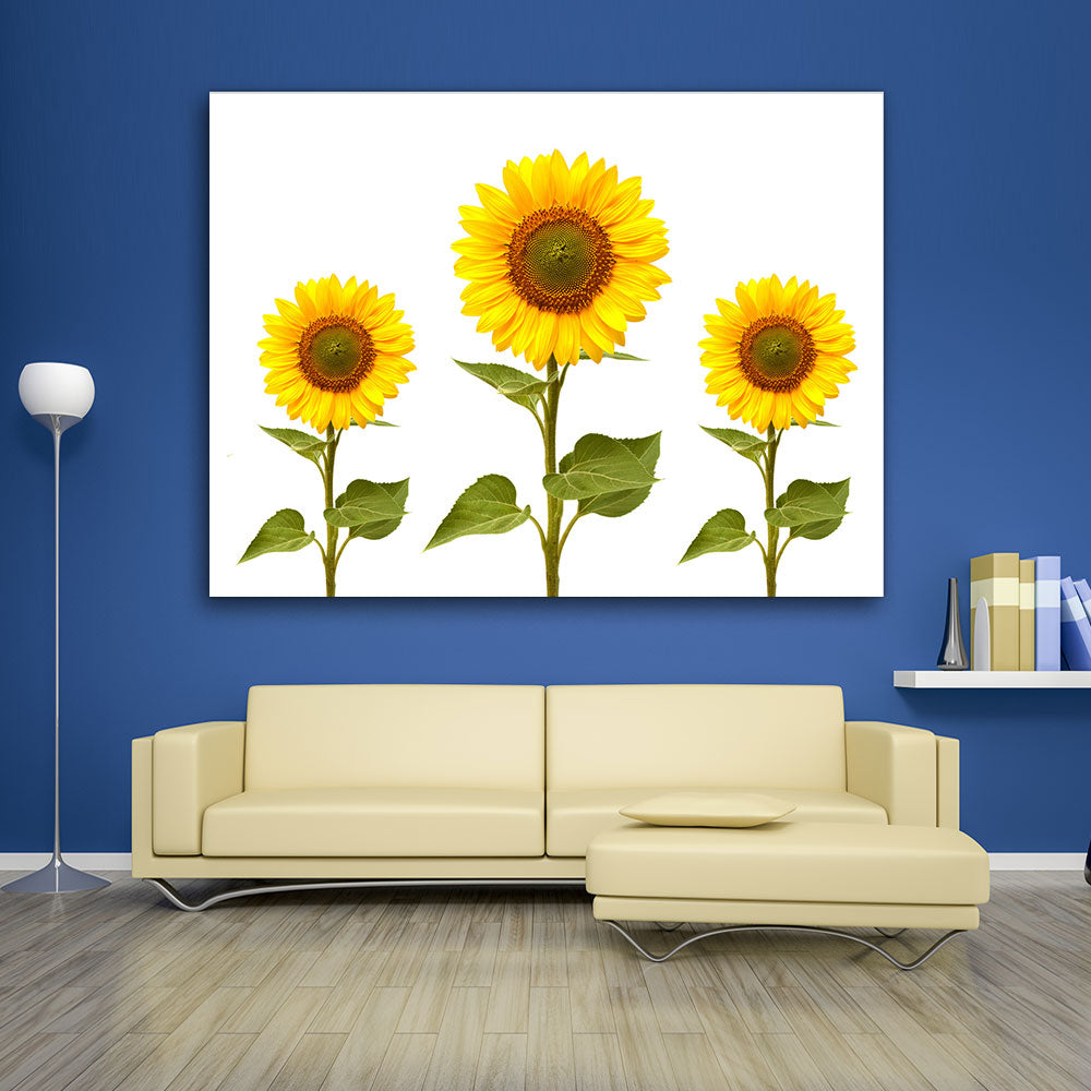 Sunflowers Canvas Wall Art v2