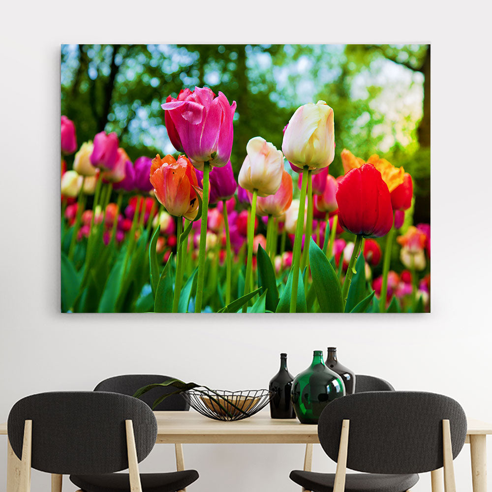 Tulip Flowers Canvas Wall Art v3