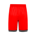 Icon RAPTORS DYO Basketball Shorts