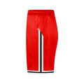 Icon BULLS DYO Basketball Shorts