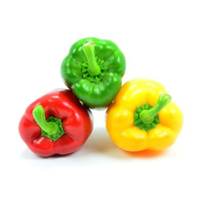 Peppers - rainbow pack (3)