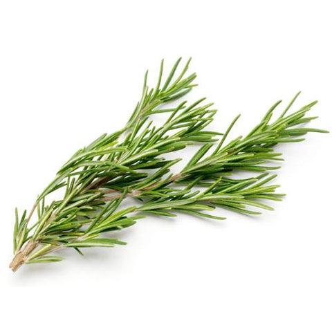 Rosemary 30g - Some Thyme