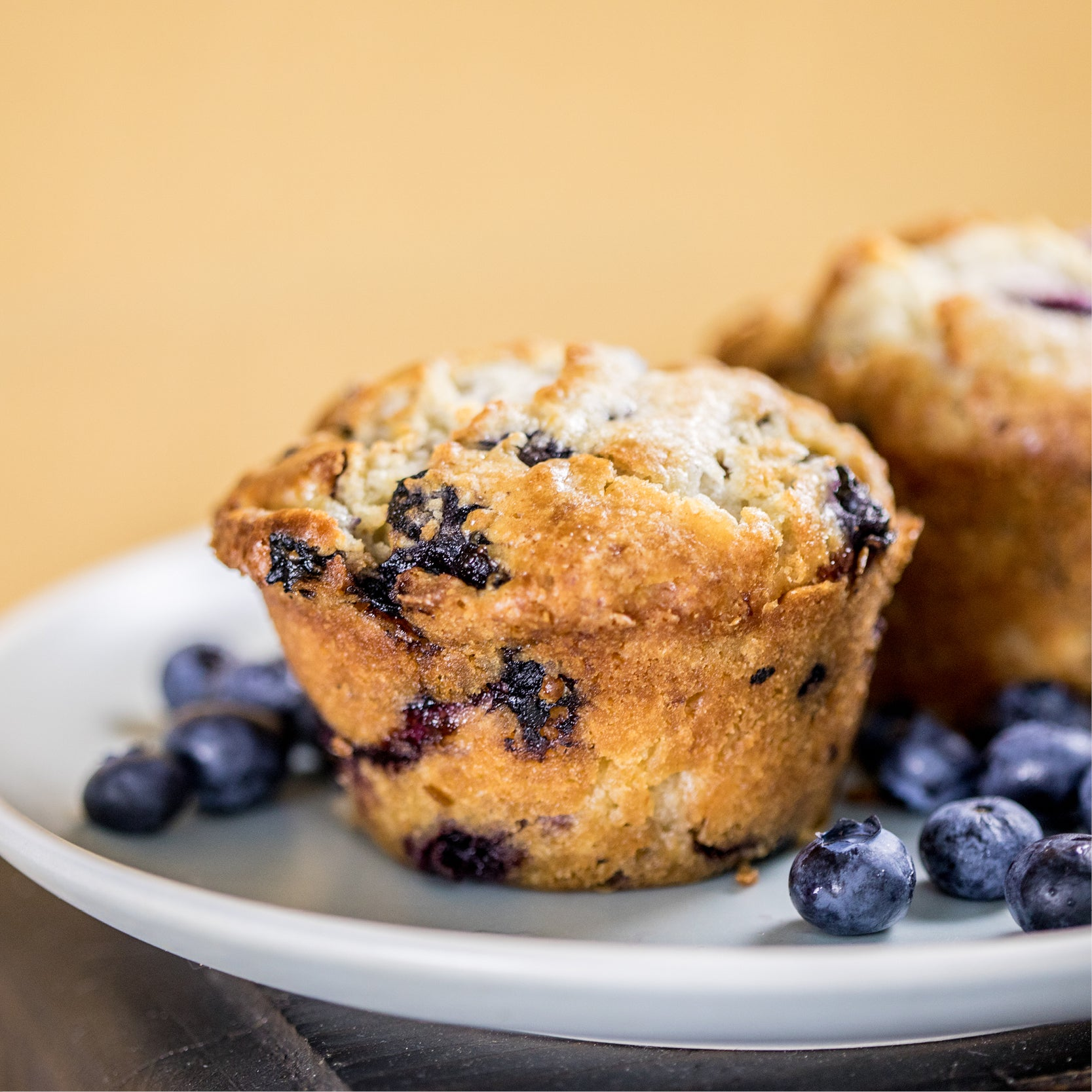 Big Blueberry Muffin