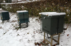 Bee Good beehives in Winter