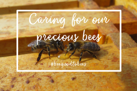 #beegoodtobees - Caring for our precious British bees