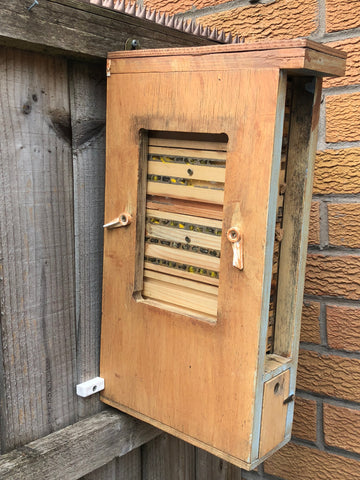Nurturing Nature's Solitary Bee Hotel in situ